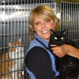 Rescued kitties after Hurricane Katrina, Louisianna